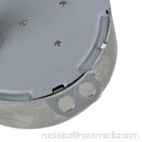 BQLZR Small Synchronous Motor AC 110V 10-12RPM 50/60Hz 4W CCW/CW TYC-50 Torque 2kgf.cm