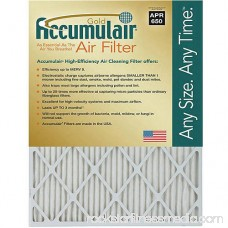 Accumulair Gold 1 Air Filter, 4-Pack 553956593